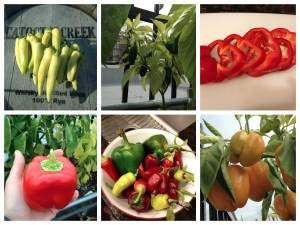 peppers six